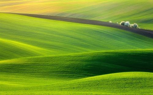 nature-landscapes_widewallpaper_greener-pastures_2611